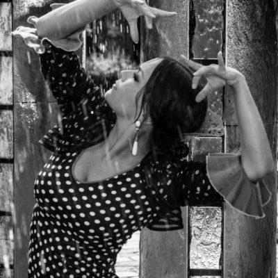 Flamenco im Regen (schwarz-weiß)