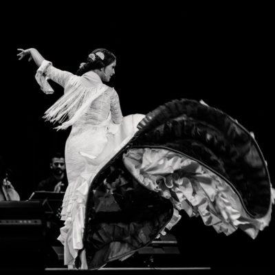 Flamenco auf der Bühne (schwarz-weiß)